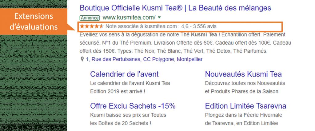 extensions d'évaluation google ads